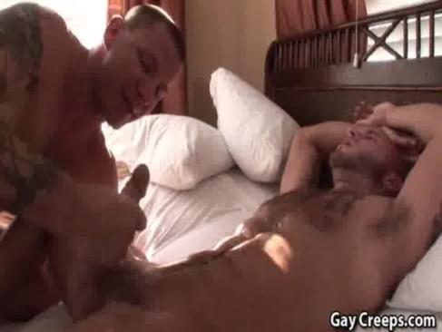 Daniel, Matheus e Renan BBB16 com pau gigante
